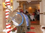 Live-size reindeer for greeting or ideas